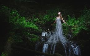 ragazza, acqua, foresta, torrente