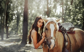 Tuti Chirstopher, horse, horse, forest