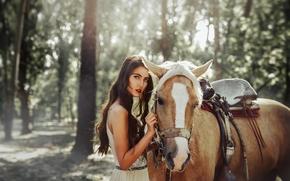 Tuti Chirstopher, лошадь, конь, лес