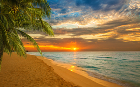 tramonto, mare, Palme, puntellare, paesaggio