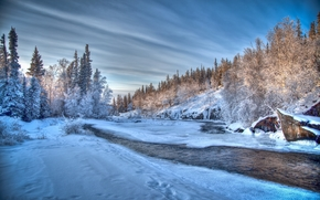 winter, river, trees, forest, snow, landscape