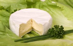 сыр, еда, пища, провиант, продукт питания, белок, зелень, вкусно