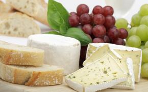 сыр, еда, пища, провиант, продукт питания, белок, вкусно, виноград