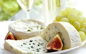 сыр, еда, пища, провиант, продукт питания, белок, вкусно, виноград, вино