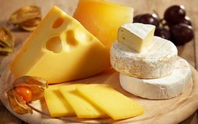 сыр, еда, пища, провиант, продукт питания, белок, вкусно