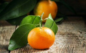 tangerinas, tsytrusy, comida, fruta
