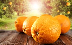 naranjas, fruta, tsytrusy, comida, tabla