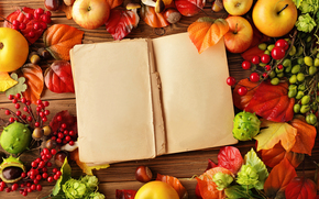 apples, frkty, food, table, book