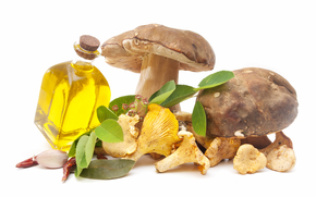mushrooms, protein, food, vegetable oil, bottle, spices, helpful, white background