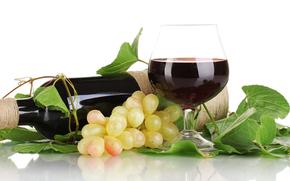 vino, uva, Bakal