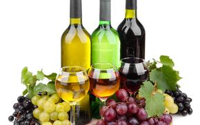 vino, Bakaly, uva