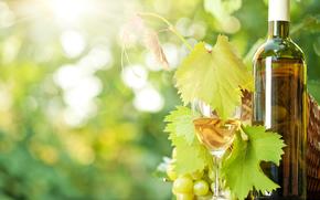 tabla, vino, uvas