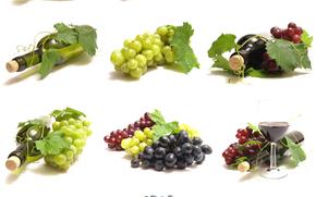 vino, uva, Bakal, fogliame