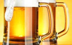 mug, beer, foam