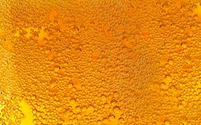 beer, mug, bubbles, drops, foam, TEXTURE