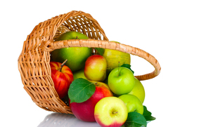 apples, fruit, basket