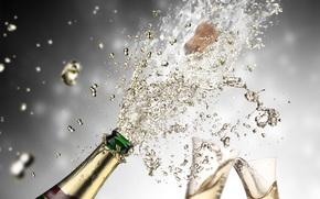 шампанское, струя, брызги, пробка