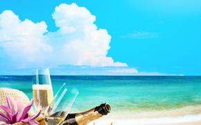 mare, puntellare, Champagne, Calici, SEASHELLS