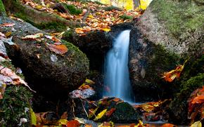 waterfall, waterfalls, nature, landscape, autumn