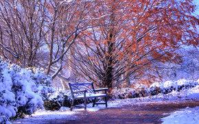 park, autumn, first snow, road, A bench, landscape