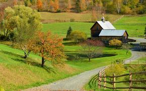 campo, Colline, stradale, domestico, autunno, paesaggio