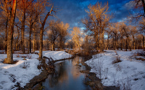 winter, river, trees, landscape