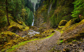 Wahclella Falls, waterfall, forest, river, footpath, trees, landscape