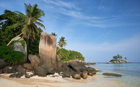 Seychelles, mar, Palms, costa, pedras, paisagem