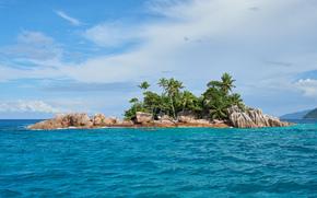 Seychelles, ilha, mar, Palms, paisagem