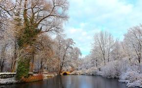 Тиргартен, Берлин, парк, озеро, мост, деревья, пейзаж