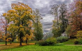 Деревянная церковь, Силезия, Польша, осень, парк, деревья, пейзаж