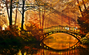 autumn, forest, river, trees, bridge, nature