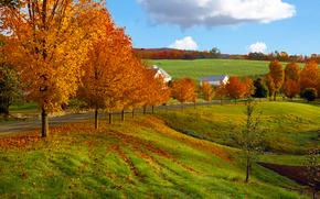 otoño, carretera, Hills, árboles, casa, paisaje