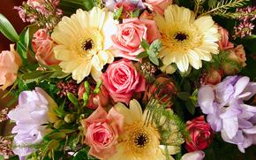 Fiori, bouquet, flora