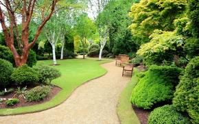 garden, trees, track, shops, landscape