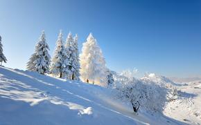 зима, сугробы, деревья, пейзаж