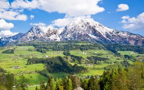Montagne, Colline, domestico, alberi, paesaggio