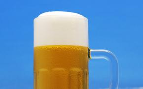 пиво пенное, опупенное, пиво, пивасик, кружка, пена, вредное очень
