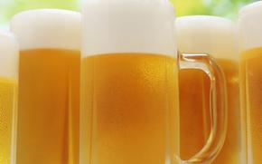 schiuma della birra, opupennoe, birra, pivasik, Tazze, schiuma, molto dannoso