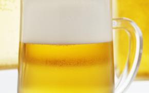 schiuma della birra, opupennoe, birra, pivasik, mug, schiuma, molto dannoso