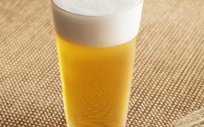Pianka piwo, opupennoe, piwo, pivasik, szkło, piana, bardzo szkodliwe