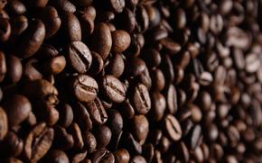caffè, Grano, STRUTTURA