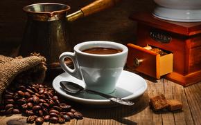 caffè, Grano, tazza