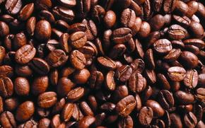 еда, текстура, фон, продукты питания, кофе, кофейные зерна