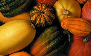 еда, текстура, фон, продукты питания, бахчевые, тыквы