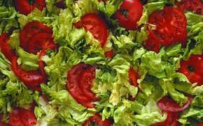 food, TEXTURE, background, Food, salad with tomatoes