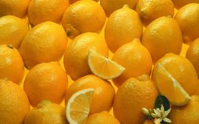 еда, текстура, фон, продукты питания, лимоны