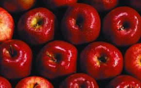 еда, текстура, фон, продукты питания, яблоки