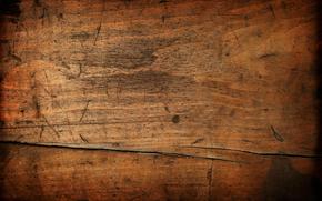 TEXTURE, Texture, stone, texture stone, Invoice, Stone background, stones, background, Design backgrounds, tree