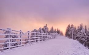 Brasov, Romania, Брашов, Румыния, зима, снег, дорога, забор, деревья, закат